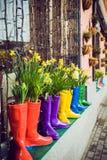 Narcisos y jacinto amarillos en las botas de goma multicoloras usadas como potes que adornan la ventana del escaparate Foco selec Imágenes de archivo libres de regalías