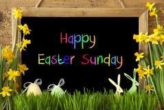 Narcissen, Ei, Konijntje, de Kleurrijke Zondag van Tekst Gelukkige Pasen stock afbeeldingen