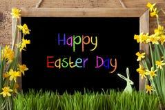 Narcissen, Konijntje, de Kleurrijke Dag van Tekst Gelukkige Pasen stock fotografie