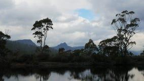 Narcissenrivier aan het eind van het spoor over land, meer st clair stock video