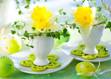 Narcissi in eggcups. Easter decoration: narcissi in eggcups Stock Photography