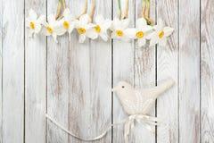 Narcissus цветут, декоративная птица на светлой деревянной предпосылке Селективный фокус Космос для текста Стоковая Фотография