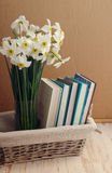 Narcissus and books in a wattled basket. Stock Image