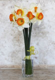 Narcissus. Bouquet of daffodils in the vase on the table Royalty Free Stock Image
