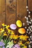 Narcissus and easter eggs Stock Images
