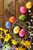 Narcissus and easter eggs Stock Photo