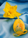 Narcissus and Easter yellow egg. Narcissus and easter egg stock photo