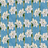 Narcissus floral seamless background Royalty Free Stock Images