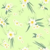 Narcissus flower seamless pattern. Spring narcissus flowers seamless pattern on a green background Vector Illustration