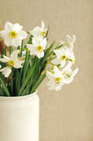 Narcissus flowers bouquet in the white vase in vintage style Royalty Free Stock Photography