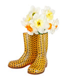 Narcissus flowers in children's yellow boots