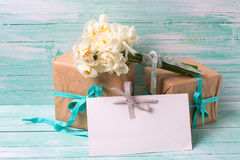 Narcissus flowers , empty tag for text , boxes with present Stock Photos