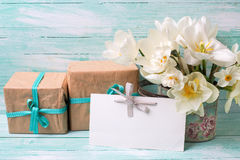 Narcissus flowers , empty tag for text , boxes with presents Royalty Free Stock Photo