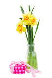 Narcissus flowers in vase Royalty Free Stock Photos