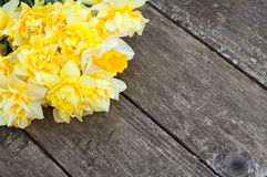Narcissus flowers on wooden background Stock Photography