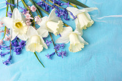 Narcissus and hyacinth flowers on blue fabric Stock Photos