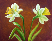 Narcissus oil painting. Royalty Free Stock Image