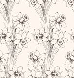 Narcissus pattern 1 Stock Photography