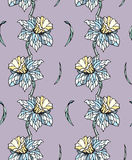Narcissus seamless pattern Stock Photos