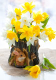 Narcissus and tulips for Easter Stock Photo