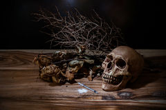 Narcotic syringe with the skull on wooden table. Still life narcotic syringe with the skull on wooden table Royalty Free Stock Images