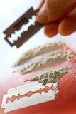 Narcotics abuse - cocaine drug use. Criminality problem royalty free stock image