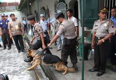 Narcotics raids Stock Photos