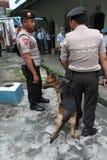 Narcotics raids Stock Photography