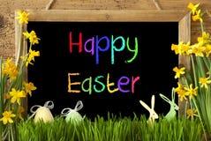 Narcyz, jajko, królik, Kolorowego teksta Szczęśliwa wielkanoc Obraz Stock