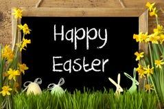 Narcyz, jajko, królik, tekst Szczęśliwa wielkanoc Obrazy Royalty Free