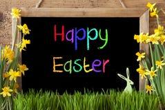 Narcyz, królik, Kolorowego teksta Szczęśliwa wielkanoc Obrazy Stock