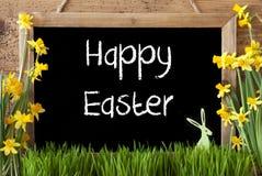 Narcyz, królik, tekst Szczęśliwa wielkanoc Obrazy Stock