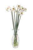 Narcyza kwiat w wazie Obraz Royalty Free