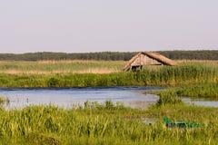 Narew park narodowy Zdjęcie Royalty Free