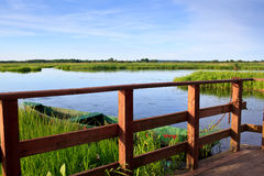 Narew river Royalty Free Stock Photography