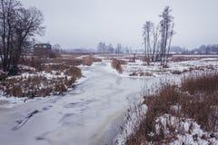 Narewka River in Poland Royalty Free Stock Images