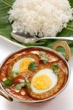 Nargisi kofta curry, indyjska kuchnia Fotografia Stock