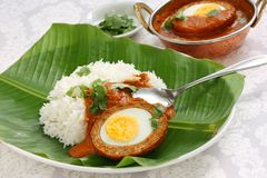 Nargisi kofta curry and rice, indian cuisine Stock Photos