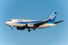 NARITA - ЯПОНИЯ, 25-ОЕ ЯНВАРЯ 2017: Крыла JA304K Боинга 737 АНАА приземляясь в международный авиапорт Narita, Японию Стоковые Фото