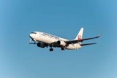 NARITA - IL GIAPPONE, IL 25 GENNAIO 2017: Atterraggio di JA320J Boeing 737 Japan Airlines nell'aeroporto internazionale di Narita Immagine Stock