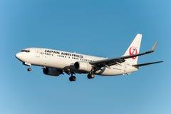NARITA - JAPAN, 25 JANUARI, 2017: JA320J Boeing 737 Japan Airlines die in Internationale Narita Luchthaven, Japan landen Royalty-vrije Stock Foto