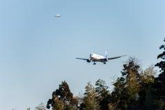 NARITA - JAPAN, JANUARI 25, 2017: Landning för JA8664 Boeing 767 ANA Cargo All Nippon Airways i den internationella Narita flygpl Arkivfoton