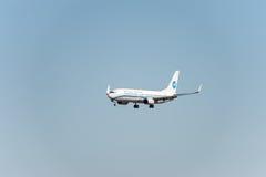 NARITA, JAPONIA -, STYCZEŃ 25, 2017: B-5563 Boeing 737 Xiamen powietrza linie lotnicze Ląduje w Międzynarodowym Narita lotnisku,  Fotografia Royalty Free