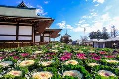 Naritasan Shinshoji tempel Arkivfoton