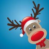 Nariz da rena e lenço vermelhos do chapéu ilustração royalty free