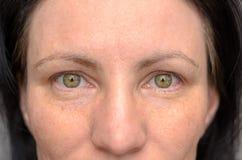 Nariz e olhos de uma mulher de olhos verdes imagem de stock