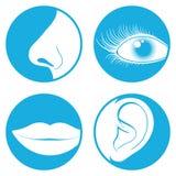 Nariz, olho, boca, pictograma da orelha Fotos de Stock Royalty Free