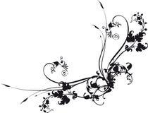 narożny kwiatek Zdjęcia Royalty Free