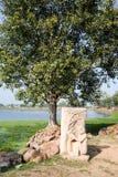Narora lake at the village of Khajuraho Stock Images