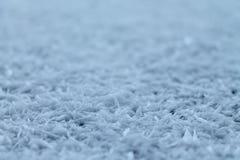 Narosły widok śnieg płatki śniegu Fotografia Stock